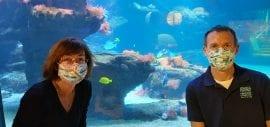Aquazoo: Ein Fisch namens Doktor